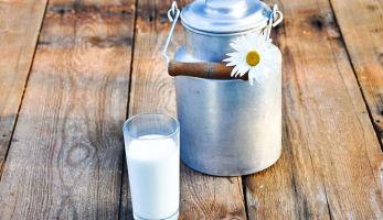 Польза молока для беременных