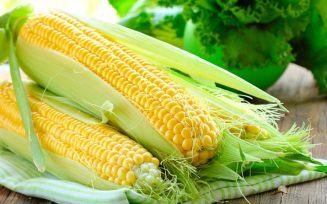 Лечебные свойства кукурузы для беременности
