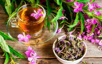 Можно ли беременным иван чай