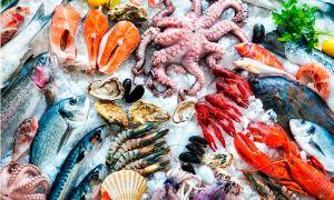 Польза и вред морепродуктов для беременных