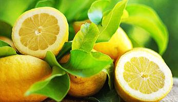 Польза лимона для беременных