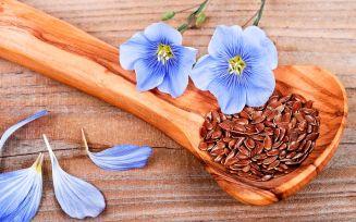 Полезные свойства семян льна для беременных
