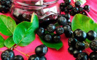 Польза черноплодной рябины для беременных