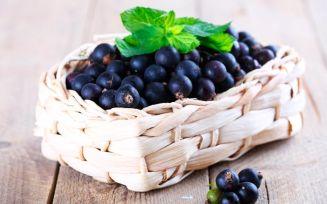 Польза черной смородины для беременных