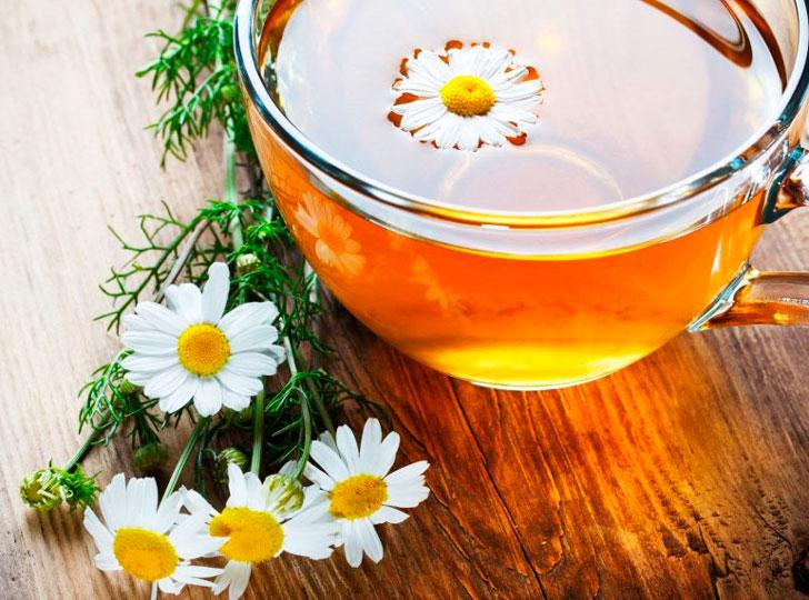 Ромашковый чай при беременности: можно ли пить